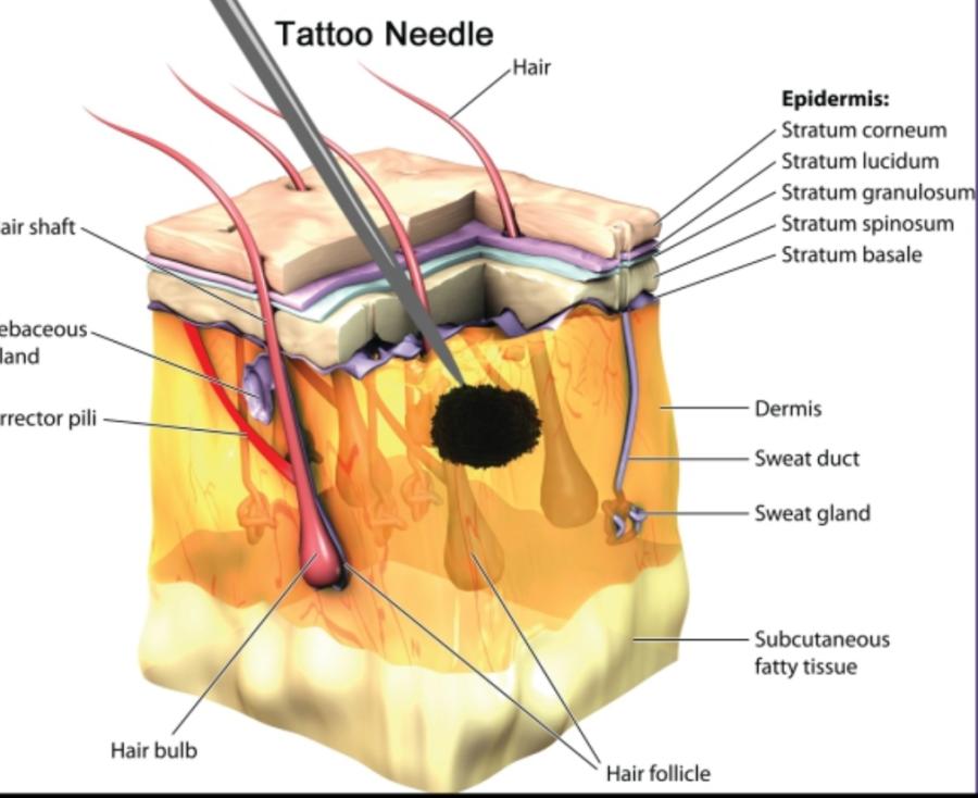 Lasser Tattoo Valencia - ¿Cómo Funciona el láser eliminación tatuajes ?